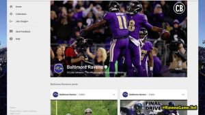 Baltimore Ravens Google Plus Fans 2017